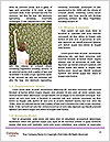 0000081005 Word Templates - Page 4
