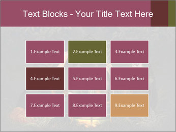0000081009 PowerPoint Templates - Slide 68