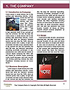 0000081009 Word Template - Page 3