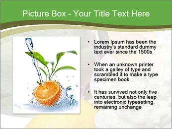 0000081016 PowerPoint Template - Slide 13