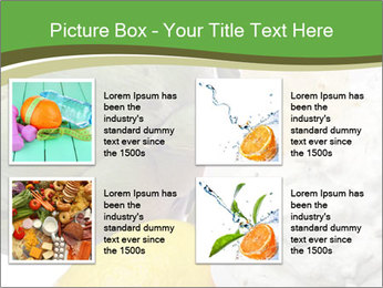 0000081016 PowerPoint Template - Slide 14