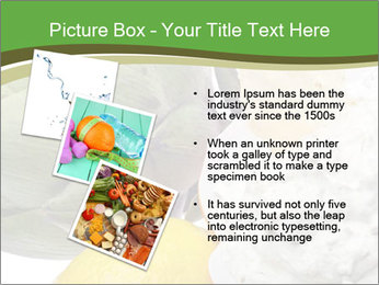 0000081016 PowerPoint Template - Slide 17