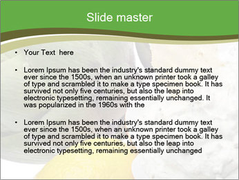 0000081016 PowerPoint Template - Slide 2