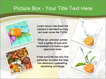 0000081016 PowerPoint Template - Slide 24