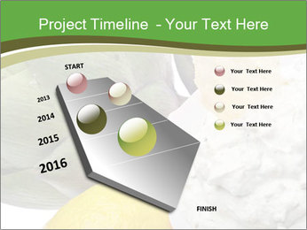 0000081016 PowerPoint Template - Slide 26