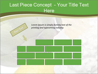 0000081016 PowerPoint Template - Slide 46