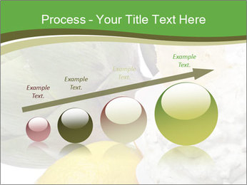 0000081016 PowerPoint Template - Slide 87