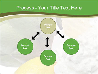 0000081016 PowerPoint Template - Slide 91