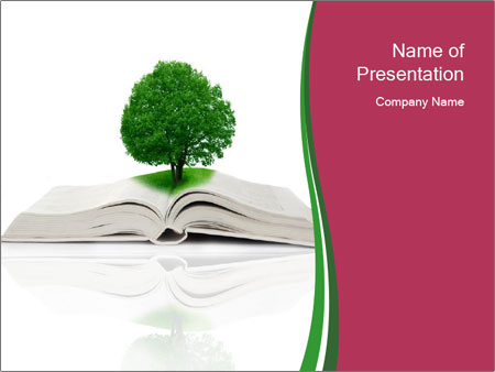 0000081019 PowerPoint Templates