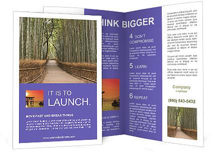 0000081028 Brochure Template