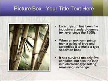 0000081028 PowerPoint Template - Slide 13