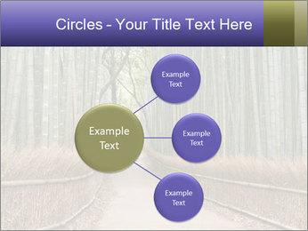 0000081028 PowerPoint Template - Slide 79