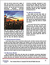 0000081031 Word Template - Page 4