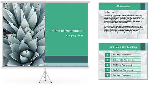 0000081032 PowerPoint Template
