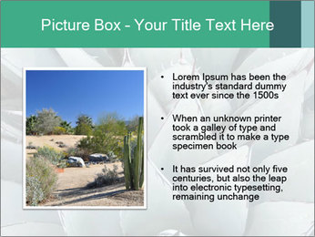 0000081032 PowerPoint Template - Slide 13
