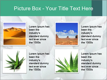 0000081032 PowerPoint Template - Slide 14