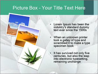 0000081032 PowerPoint Template - Slide 17