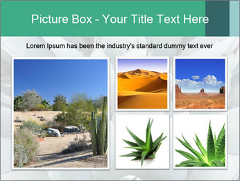 0000081032 PowerPoint Template - Slide 19
