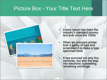 0000081032 PowerPoint Template - Slide 20