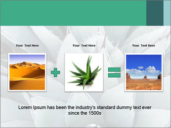 0000081032 PowerPoint Template - Slide 22