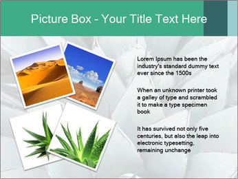 0000081032 PowerPoint Template - Slide 23