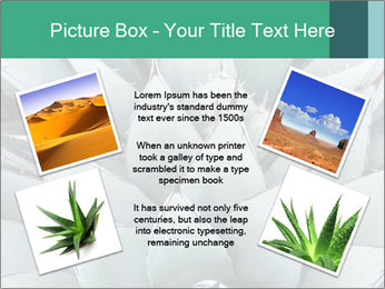 0000081032 PowerPoint Template - Slide 24
