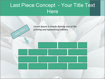 0000081032 PowerPoint Template - Slide 46