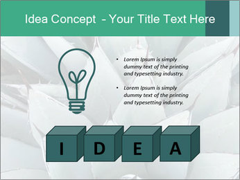 0000081032 PowerPoint Template - Slide 80