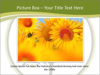 0000081034 PowerPoint Template - Slide 15
