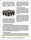 0000081038 Word Templates - Page 4