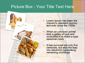 0000081040 PowerPoint Template - Slide 17