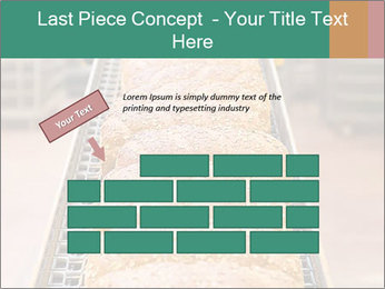 0000081040 PowerPoint Template - Slide 46