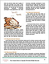 0000081040 Word Templates - Page 4