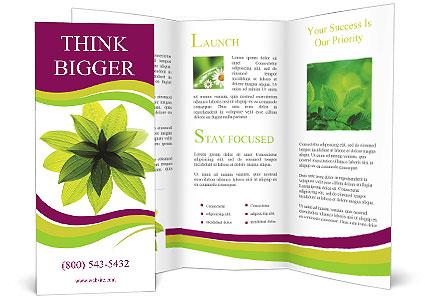 0000081045 Brochure Templates