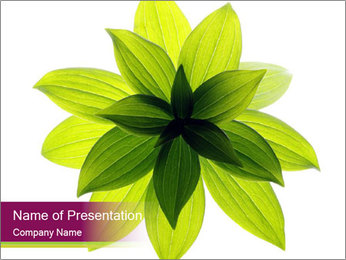 0000081045 PowerPoint Templates - Slide 1