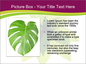 0000081045 PowerPoint Templates - Slide 13