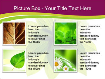 0000081045 PowerPoint Templates - Slide 14