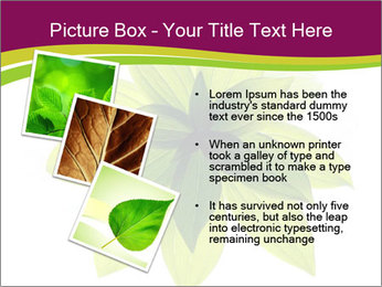 0000081045 PowerPoint Templates - Slide 17
