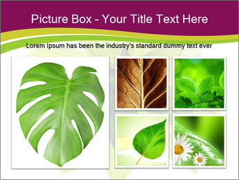 0000081045 PowerPoint Templates - Slide 19