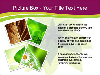 0000081045 PowerPoint Templates - Slide 23