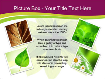 0000081045 PowerPoint Templates - Slide 24