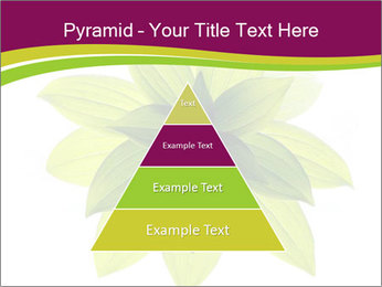 0000081045 PowerPoint Templates - Slide 30