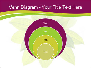 0000081045 PowerPoint Templates - Slide 34
