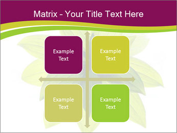 0000081045 PowerPoint Templates - Slide 37