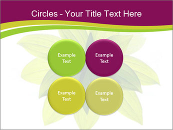 0000081045 PowerPoint Templates - Slide 38