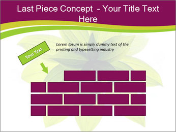 0000081045 PowerPoint Templates - Slide 46