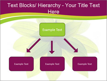 0000081045 PowerPoint Templates - Slide 69