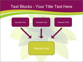 0000081045 PowerPoint Templates - Slide 70
