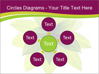0000081045 PowerPoint Templates - Slide 78