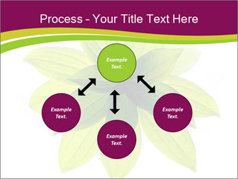 0000081045 PowerPoint Templates - Slide 91